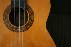 Classical Guitar Lessons - Education Downtown-West End Greater Vancouver Area image 1