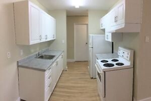 Comfortable Spacious 1 bedroom - Madison Apartments