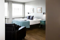 Accommodation- for a  student near Seneca College York Campus