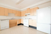 Beautiful & Pet friendly 1 Bed room with in Suite laundry.
