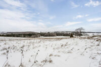 Almost 50 Acres in Desirable Location- 2314 3rd Line Innisfil ON