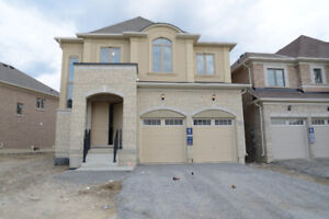Brand New Detached Home in Newmarket