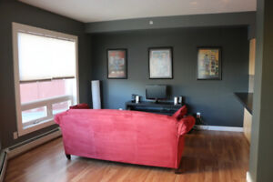 beautiful 1 Br cozy suite in great downtown building
