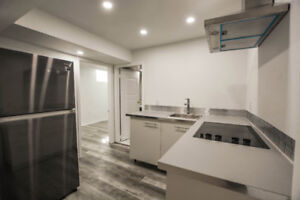 Basement apartment - 2 bedroom 1 living area , independent unit