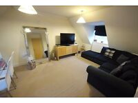 Immaculate 2 bedroom apartment
