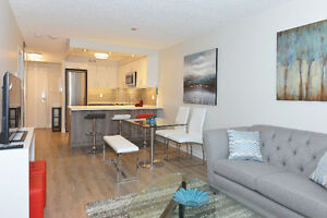Wow! Luxurious 2 BR Suite With Skyline and Lake Views!