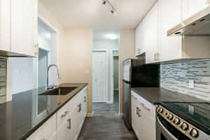 Fully Renovated 1 bedroom Condo in Chilliwack Proper