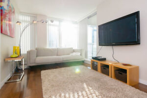 $2500 / 1br Luxurious Fully Furnished One Bedroom Apartment