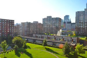 Beautiful  furnished 3 1/2 with garden view - Griffintown