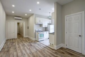 Stunning Renovated Downtown 2 Bedroom Apartment