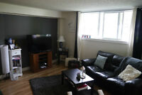 One Bedroom Apartment Kensington AVAILABLE IMMEDIATELY