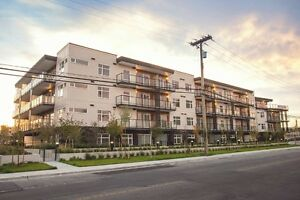 Brand New - $1250 - 1 Bedrooom Condo in a New Secured Lowrise
