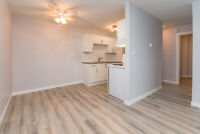 1 BR Unit available in Willow Manor for only $1150!