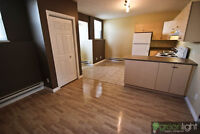 Beautiful basement apartment with Large windows by hospital