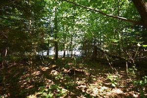 Haliburton Real Estate Team-Moose Lake Waterfront-$329,000 Kawartha Lakes Peterborough Area image 5