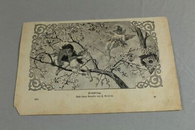 Art Nouveau Graphic - Putti On Tree - After Painting
