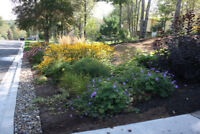 Gardening and Landscape Design