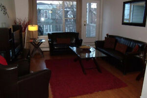 Fully furnished downtown condo