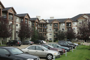 2 Bedroom Condo for Rent in Inglewood,, 12A Ironside Str Red Dee