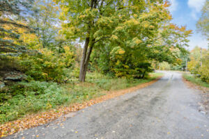 0.54 Acre Lakeside Building Opportunity - Lot 12 Lakeview Cres.