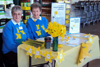 Canadian Cancer Society Daffodil Pin Sellers