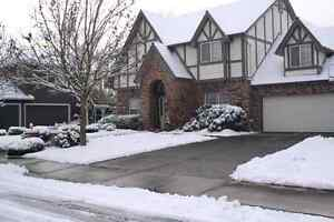 Snow removal team. Best quality. Lowest prices guaranteed! London Ontario image 1