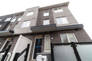 Brand new spacious furnished townhome in Scarborough