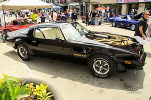 SURVIVOR RARE 1978 TRANS AM 6.6 ALL ORIGINAL NUMBERS MATCH