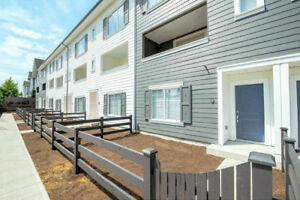 Brand New 4 Bedroom Townhouse In South Surrey
