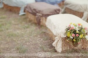 Golden straw bales for your wedding decor / special events! Kitchener / Waterloo Kitchener Area image 8