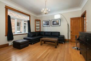 Amazing 5 Bedroom apartment - Plateau MontRoyal