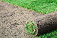 RE-SODDING & LAWN REPLACEMENT EXPERTS! OVER 600 HAPPY CUSTOMERS