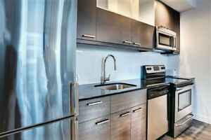 Great Apt/Loft in New Luxury Bldg for Transfer of Lease Downtown