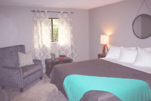 BX Suites - Dog Friendly Vacation Rental