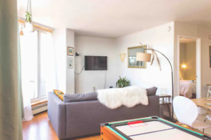 Furnished/All Inclusive - Downtown 1 Bedroom Apt - Jan - April