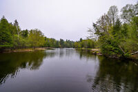 Beautiful Waterfront Hobby Farm for sale in Perth! MUST SELL!