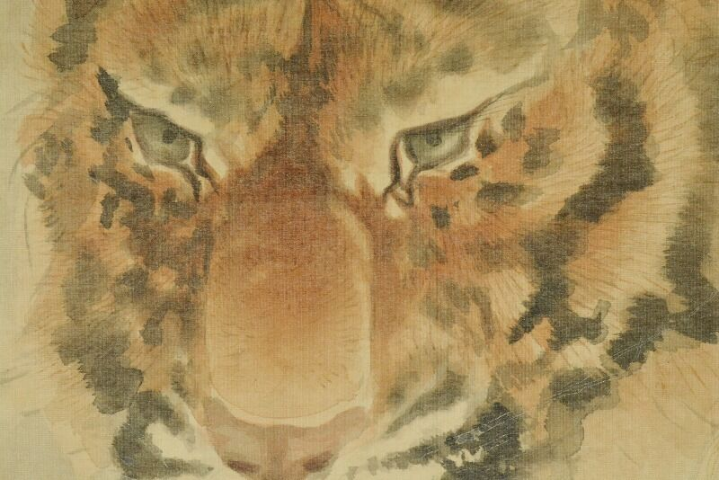 TIGER Hanging Scroll Japanese Painting Old Picture Ink 虎 Antique Japan PIC b025