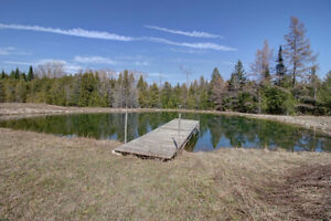 4500 sq ft Country Oasis Home on 42 Acres, 3 acre Lake! London Ontario image 10