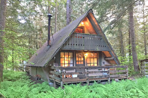 Mt. Baker Lodging - Cabin #86 - RUSTIC, PETS OK, BBQ, SLEEPS-6!