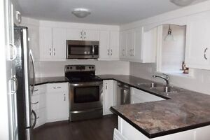 BEAUTIFUL DOWNTOWN CH'TOWN NEW 1 BDRM BSMT APT