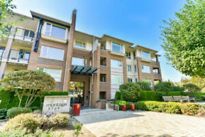 Conveniently Located Bright 2 Bedroom Unit (843ft2)