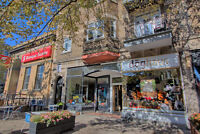 LARGE BRIGHT  HEATED FULLY RENOVATED 4.5 ON SHERBROOKE STREET