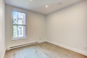 Looking for a female roommate to live in Saint-Henri 4 1/2