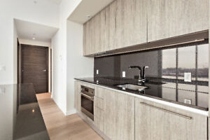 Luxurious Condo $2000 Downtown 3.5 All Included Furnished