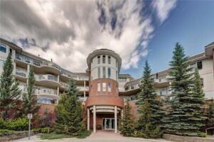 ONE OF A KIND CEMENT COMPLEX/Calgary condo