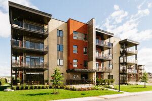 Magnifique suite de luxe dans le Plateau Gatineau Ottawa / Gatineau Area image 8