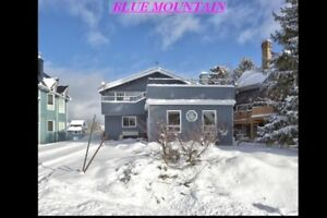 Blue Mountain Vacation Rental (Seasonal)