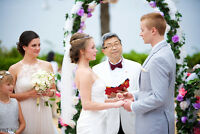 Wedding Photographer Vancouver and Lower Mainland