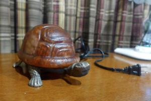 Lampe tortue | verre et fonte | pour enfant ou autres  | 15$