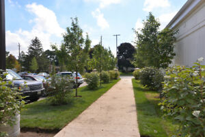 2 BEDROOM NEW CONDO FOR LEASE, AVAILABLE IMMEDIATELY